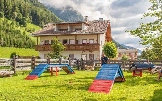 Hundeplatz, Training, Aktivurlaub mit Hund, Natur, Garten