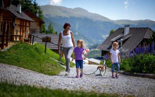 Hund, Familienurlaub mit Hund, Berge, Ausblick