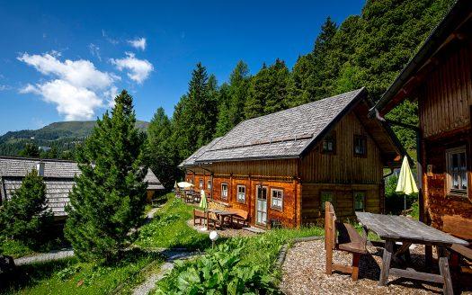 Familienurlaub mit Hund, Berge, Wald, Ausblick