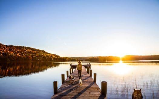Urlaub mit Hund am See oder Fluss
