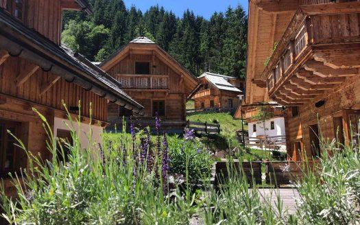 Lavendel, Hütte, Hütten, Holz, Wald, Berge, Österreich, Wandern mit Hund, Wanderurlaub mit Hund