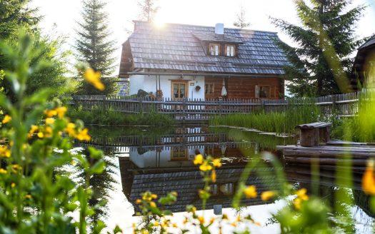 Wandern mit Hund, Teich, Alm, Österreichurlaub mit Hund, Sommer, Sonne