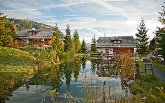 Österreichurlaub mit Hund, Teich, Alm, Almdorf, Berge, Wald