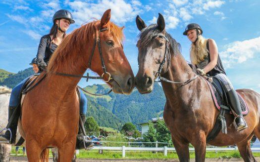 zwei Pferde, Fuchs und Brauner, zwei Reiterinnen, Reitplatz am Dagnhof, Reiturlaub in Tirol, Urlaub mit Hund