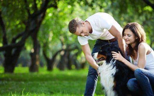 Pärchen mit Hund in der Natur im Frühling, Seminarhotel Retter, Urlaub mit Hund in Österreich