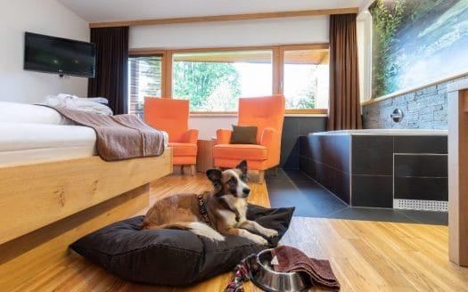 liebe, berge, energie winter urlaub hund romaantik almfrieden
