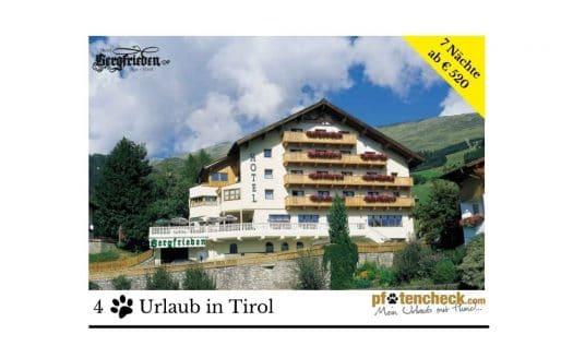 Angebot Hotel Bergfrieden