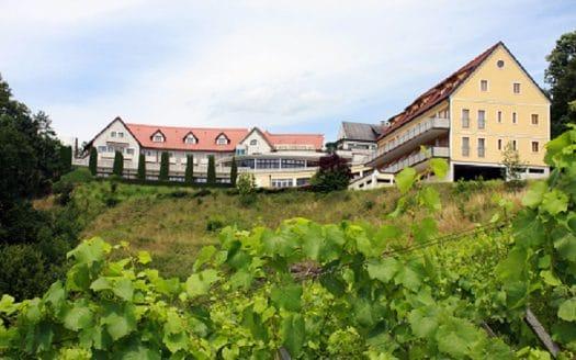 Hotel Garni am Seggauberg mit Weingarten im Vordergrund.