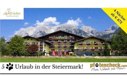 Angebot Hotel Almfrieden